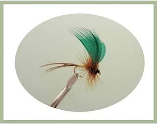 TROTE mosche per pesca a mosca Damsel Hothead Esche Gancio Taglie UK 10 o 12
