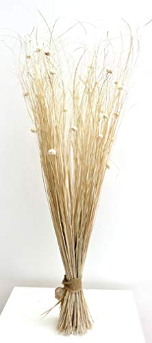 Mazzo legato di fiori secchi e artificiali color crema, alto 95cm, pronto per vaso