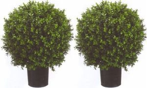 Silk Tree Warehouse Company Inc Two 2 Foot Outdoor Artificial Boxwood Ball Topiary Bushes Potted Plants 16 inches Wide Silk Tree Warehouse Company Inc