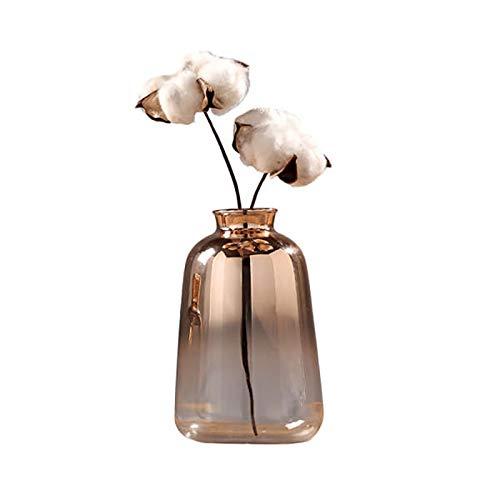 Tiamu Jarrón de cristal nórdico galvanizado dorado jarrón de cristal flores jarrones para decoración del hogar flores secas botella Bar (9 x 14 cm)