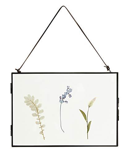 Nordal Bild Meta mit getrockneten Blumen im Rahmen in Schwarz zum Aufhängen, 20 x 30 cm