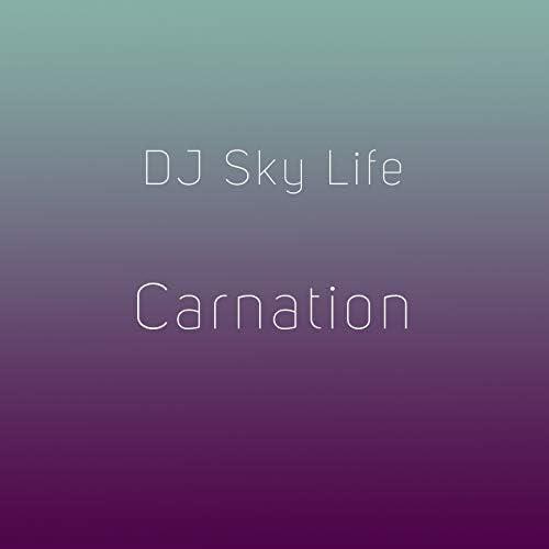 DJ Sky Life
