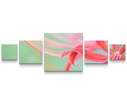 Paul Sinus Art Leinwandbilder | Bilder Leinwand 160x50cm Rote Spinnenlilie