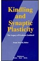 Kindling and Synaptic Plasticity
