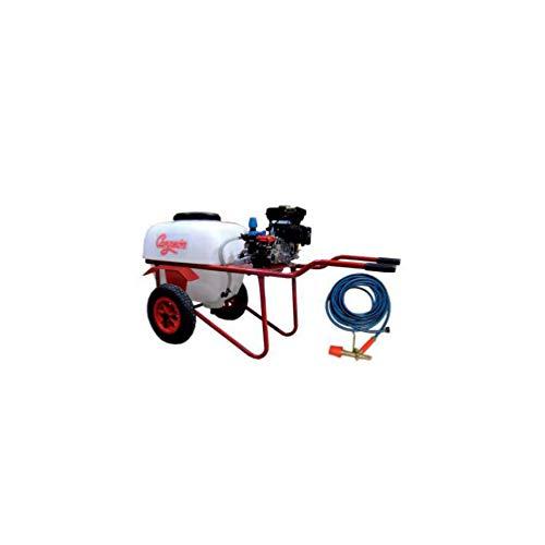 CAMPEON M277993 - Carretilla pulverizadora sulfatadora cp4 1002 2 5cv