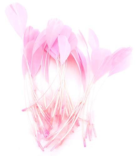 ERGEOB schwarz abgestreift Coque Schwanz Federn 10-15cm/4-6 Zoll Länge Basteln Material Kopfschmuck Brosche Material (12 Pink)