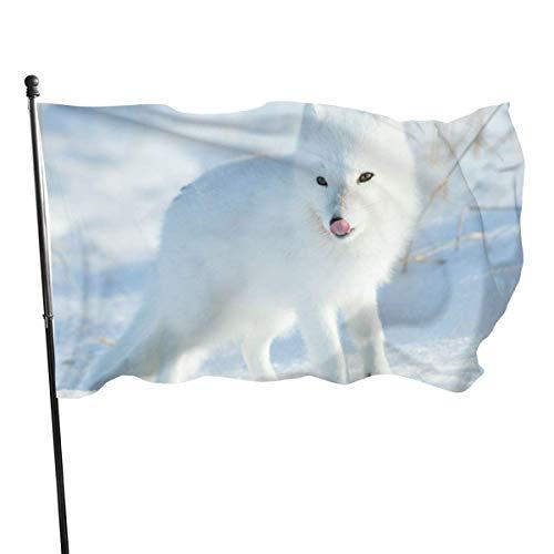 DDOBY Drapeau de Polyester Arctic Fox Fly Breeze 3x5 Pieds, Drapeaux de Plage durables résistants à la décoloration avec en-tête et œillet en Laiton, Facile à Utiliser