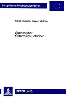 Sunrise Ueber Oesterreichs Betrieben: Die Adoption Thermischer Solaranlagen in Unternehmen Des Gewerbe Und Des Tourismus in Oesterreich. Eine Empirische Bestandsanalyse