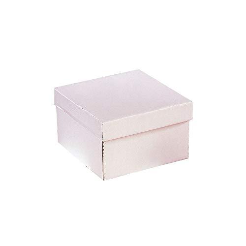 12'' Heavy Duty Cake Transport Box