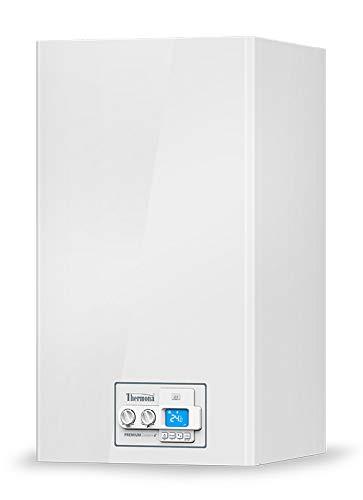 Thermona Gastherme Therm 35 KDZ 37 kW Erdgas E/H