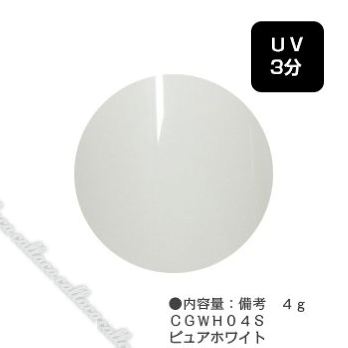 スカウト杭展望台カルジェル(Calgel) カラージェル 4g  CGWH04S ピュアホワイト
