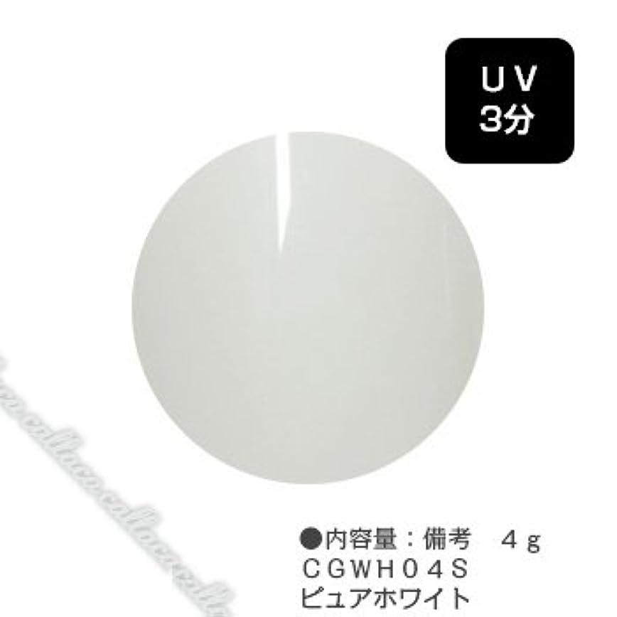非難するサイトライン悪性カルジェル(Calgel) カラージェル 4g  CGWH04S ピュアホワイト