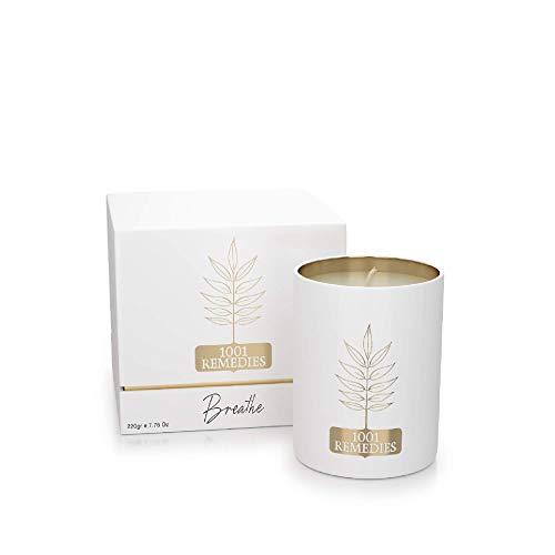 1001 Remedies Vela Perfumada Breathe - Velas navideñas Frescas perfumadas con aceites Esenciales de Pino, eucalipto y Lavanda - 100{73fc09218b781127ff0c3e18d0a48cfe505bc38c60a9c5e732fe381bff4ea905} Natural, Cera orgánica, 220 g