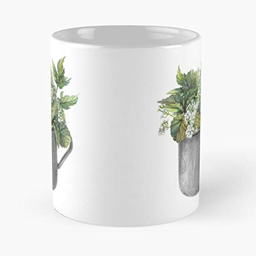 Mug With Green Forest Growth Classic Mugh - Funny Gift Coffee Tea Cup White 11 Oz The Best Gift For Holidays.