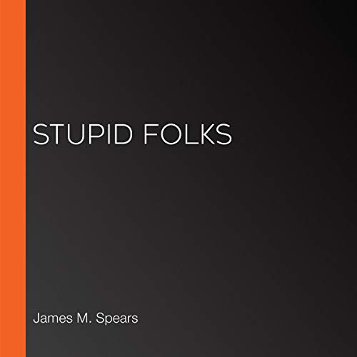 Stupid Folks cover art