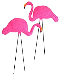 """Set of 2 34"""" Tall Lawn flamingos. Flamingos come in 2 designs. Flamingos are made of sturdy pink plastic and feature great detail. Size: Each flamingo is approx. 16"""" Long and 34"""" Tall A really beautiful tropical accent for parties, birthdays, Christm..."""