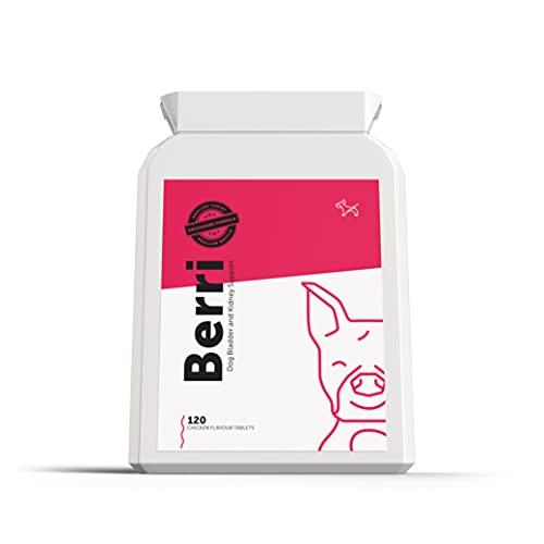 Cranberry Kapseln zur Blasen- und Nierenunterstützung für Hunde –...