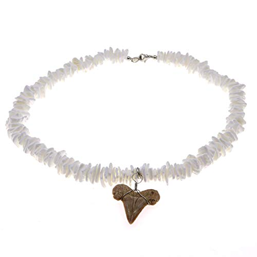 16 Inch Real Shark Tooth Necklace with Authentic Shark Tooth Pendant Genuine Fossil Cool Surfer Necklaces - Novelty Fashion Jewelry for Girls, 3 Inch Extender Included