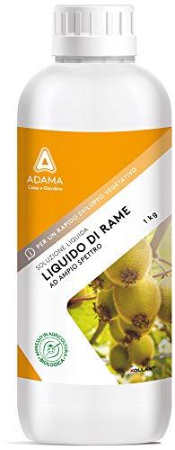 SOLFATO DI RAME LIQUIDO TRATTAMENTI FUNGICIDI BIOLOGICO INVERNALE agrumi ciliegio pesco mele pere vite olivo susino noce nocciolo orticole e aromatiche