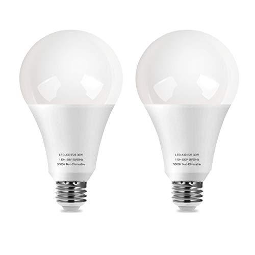 250-300W Equivalent LED Light Bulb, A30 30W 3000 Lumens Daylight White 5000K LED Bulbs for Garage, Warehouse, Workshop, CRI80+ 110V, E26 Base Floodlight Bulb Non-Dimmable, 270° Beam Angle 2-Pack