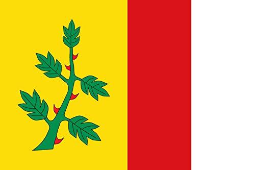 magFlags Bandera XL Municipial de Espinosa de Villagonzalo Palencia | Bandera Paisaje | 2.16m² | 120x180cm