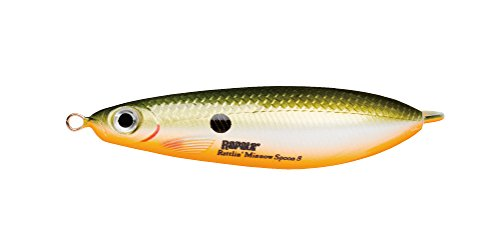 Rapala CUCHARILLA ONDULANTE Rattlin Minnow Spoon - 16, per Unit, Redfin Shiner, 05, 8