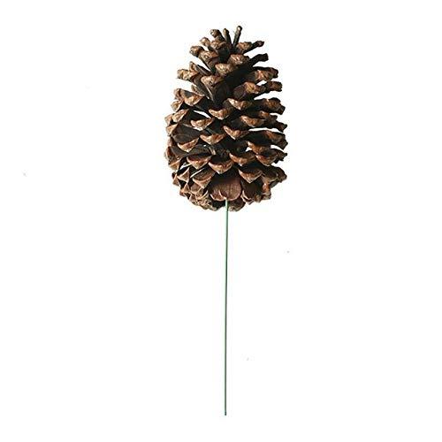 OYPY Dekorative Getrocknete Blumen Handgemachte natürliche Pine Cone Eichel for Weihnachtsschmuck Fest-Haupt Baum Dekoration Fotografie Dekor (Farbe : Brown)