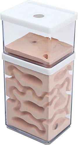 aleawol Natürliche Ameisenfarm Ameisennest Formicarium aus Gips Transparentes Ameisenhaus PC Kunststoff Ameisen Zucht Box Ameisen Terrarium Ant Nest Ant Farm