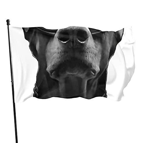 GOSMAO Bandera de jardín Doberman con Gafas de Sol Color Vivo y Resistente a la decoloración UV Bandera de Patio con Costura Doble Bandera de Temporada Banderas de Pared 150X90cm