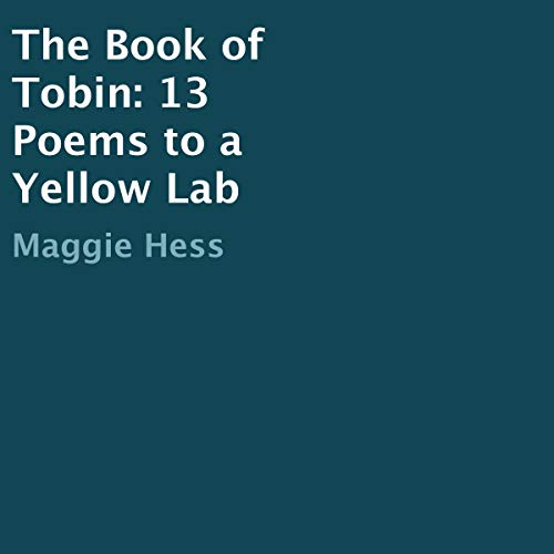 The Book of Tobin audiobook cover art