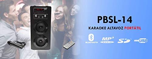 BSL Altavoz Portatil | Bluetooth | Potencia 15w | Radio FM | Reproductor MP3 | Mando a Distancia | USB y SD | Función Karaoke | Micrófono incluído | Sonido Estereo |