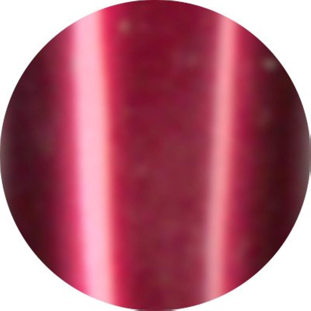 呪われたシェル赤道Jewelry jel(ジュエリージェル) カラージェル 5ml<BR>メタリック MT019