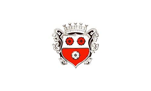 Unbekannt magFlags Tisch-Fahne/Tisch-Flagge: Moosburg a.d.Isar, St 15x25cm inkl. Tisch-Ständer