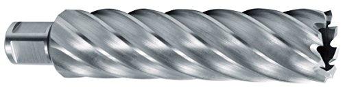 Ruko 1082034 HSS holle boor met Weldon-schacht 3/4 inch CBN geslepen zaagdiepte 110 mm (34 x 19 mm), 34 mm