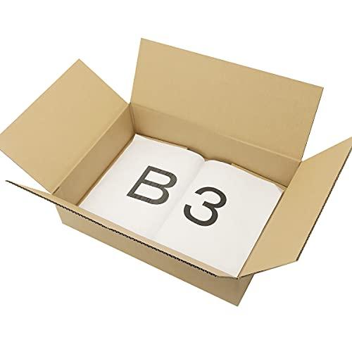 アースダンボール ダンボール 段ボール B3 120サイズ 薄型 宅配 5枚 【530×380×120mm】【0620】
