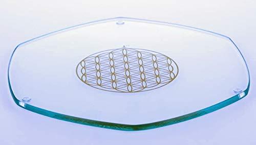 Energy Plate 22 cm