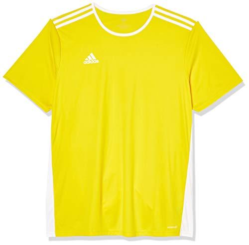 adidas Entrada 18 JSY T-Shirt, Hombre, Yellow/White, L