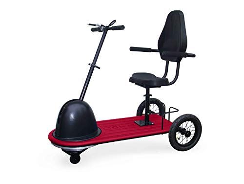 ROTA MOBILITY RoScooter