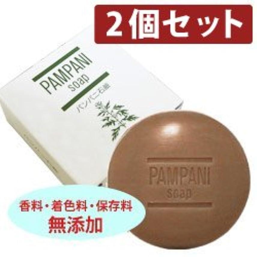 明らか物質隠パンパニ 石鹸?90g 【2個セット】
