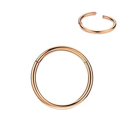 FANSING womens 316L Surgical Steel Hinged Nose Rings Hoop 20G 18G 16G 14G 12G 10G, Diameter 5Mm To 16Mm, Color Gold - Rose Gold - Silver - Black - Rainbow Rose Gold