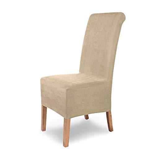 SCHEFFLER-Home Stretch Stuhlhusse Leon   6er Set elastische Stuhlabdeckungen aus Wildleder   Stuhlhussen Schwingstühle   Spannbezug mit...