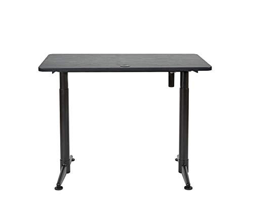 "ApexDesk Vortex Series M Edition 48"" Electric Height Adjustable Standing Desk (Memory Controller, Textured Black Top)"
