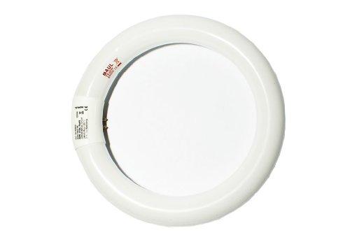Maul 8282205 - Lámpara fluorescente de bajo consumo (potencia de 22W, zócalo G10Q, temperatura de color de 6500K)