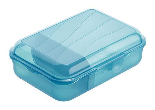 Rotho Fun Vesperdose 0,9l mit herausnehmbarer Trennwand, Kunststoff (PP) BPA-frei, blau, S/0,9l (17,7 x 12,9 x 6,0 cm)