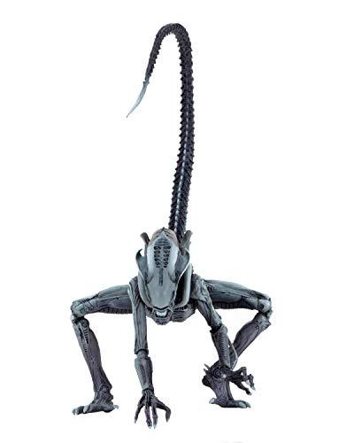 NECA Alien vs Predator Actionfigur Arcade Arachnoid Alien Multicolor, aus Kunststoff, Hersteller