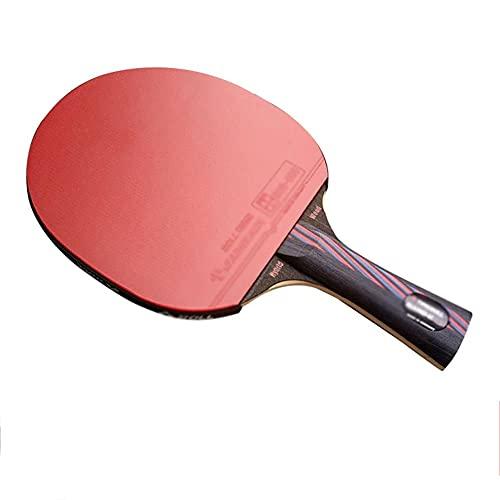JIANGCJ bajo Precio. Pro Ping Pong Paddle - 1 Raquetas de Tenis de Mesa - Eco-Friendly - Esponja de Alta Rebote - Caja de Paleta-GRIPERGONÓMICO - Juegos Familiares y Amigos - Juegos recreativo