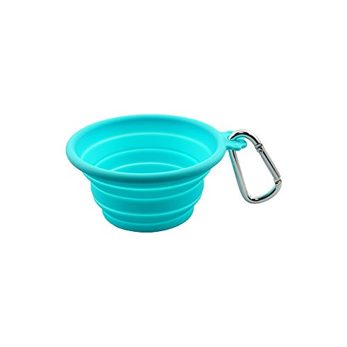 FFDPET Silicone Collapsible Travel Bowl for Dogs & Cats, X-Small, Teal