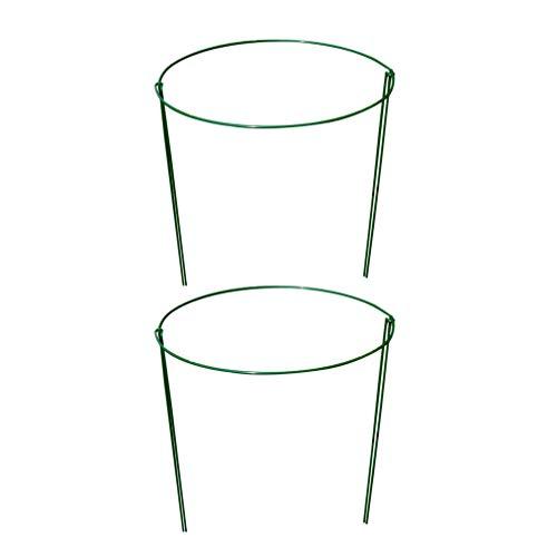 Cabilock 4 Pcs Cage de Support de Plante Pot en Pot Support de Tige Treillis Treillis d'escalade pour Plantes Grimpantes Couleur Aléatoire L