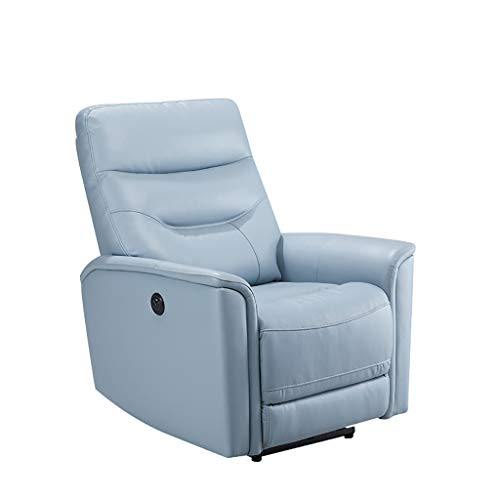 LIU Divano per Poltrona reclinabile di Grandi Dimensioni con Ascensore Elettrico per Anziani Grandi e Alti, Porte USB, Ecopelle