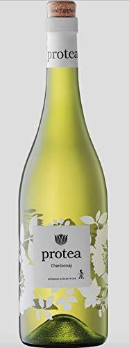 Protea Chardonnay - Weißwein - Trocken - Südafrika - Jahrgang 2020 - Anthonij Rupert Wyne Estate